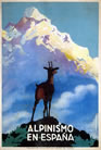 Original Poster